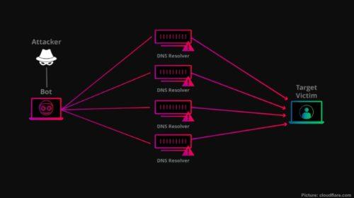 DDoS útoky udeřily na stránky vzdělávacích institucí