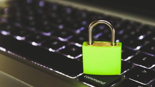 Nová generace odborníků na kyberbezpečnost vyroste na Mendelově univerzitě v Brně